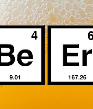 The chemistry of beer recensione
