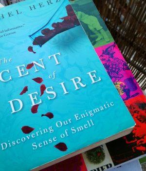 Scent of Desire Recensione