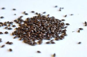 FEAT - Roasted Barley