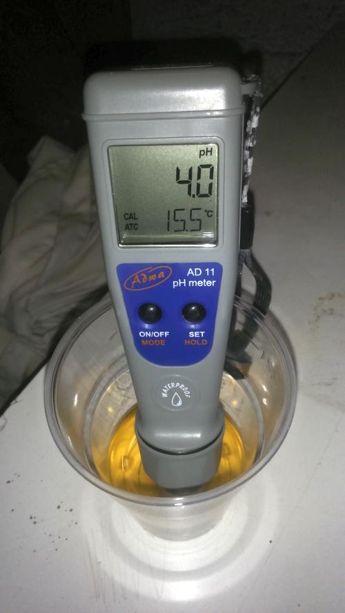 Brewing Bad Lambic ph