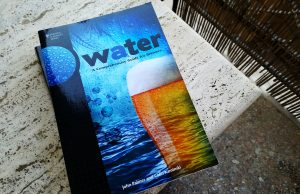 Water Palmer Recensione