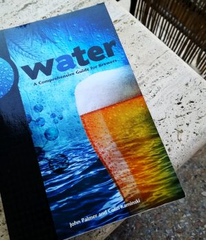 Water Palmer Recensione