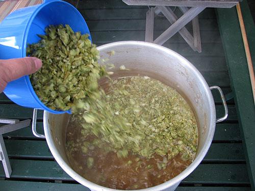 hops boil