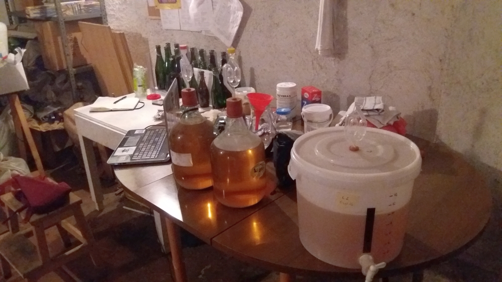 LBB1 Brewing Bad sour