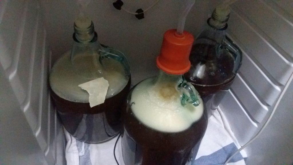 avvio-fermentazione
