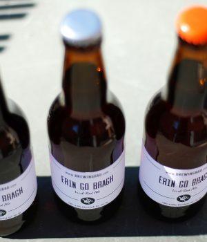 Erin Go Bragh Ricetta Irish Red Ale