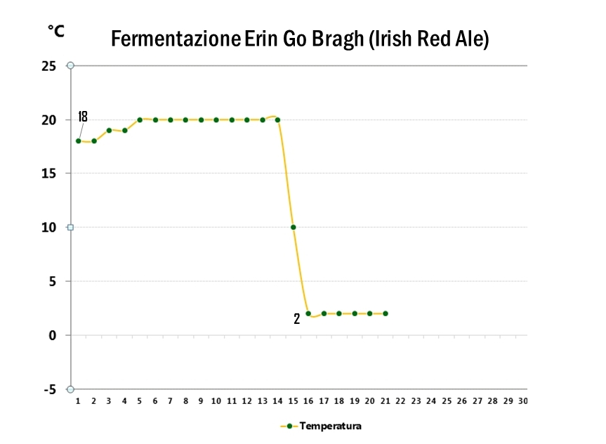 Irish Red Ale - Fermentazione