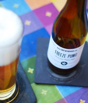 Freeze Punk! Hoppy lager ricetta